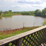 Victoria Creek Ranch