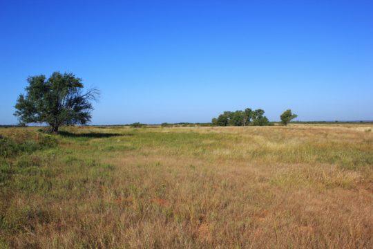 Barrera Farm