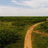 Joy Hunting Ranch