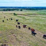 1201 Ranch