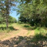 Prospect Hunting Ranch