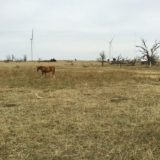 Iron Mountain Road Ranch