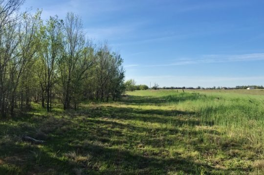 Cottonwood Ln Land